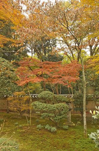 【写真】2013 紅葉 : 即宗院/2021-07-30/IMGP3439