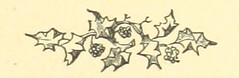 Image taken from page 243 of 'The Illustrated Family Burns, with an original memoir. [With engravings, including a portrait.]'