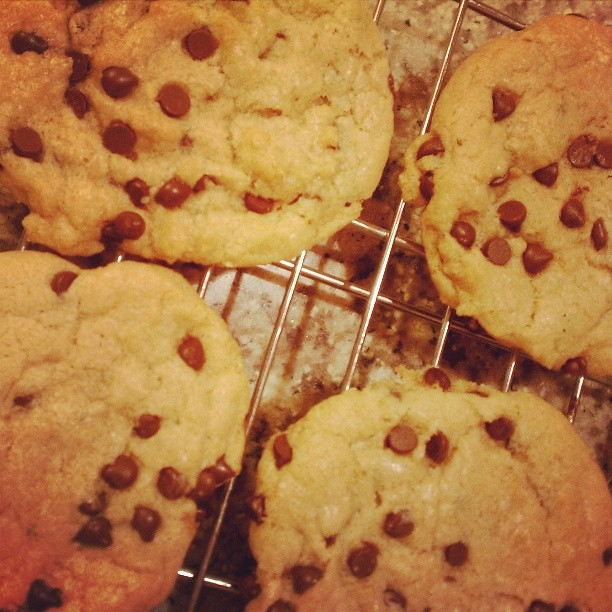 Vegan chocolate chip cookie perfection... Chewy and delicious, from the book Vive le Vegan! #vegan #allergyfreebaking