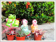 Garden figurines to add interest to our front yard, Feb 4 2014