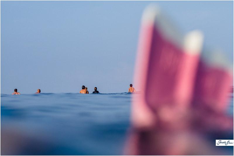 33_banyans_surfers_groms_dafin_pink.jpg