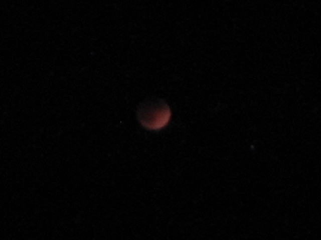 Picture of Blood Red Moon