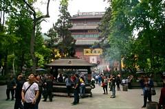china 441