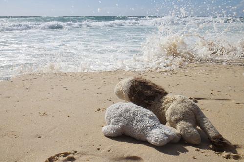 Roar and Elka on the beach