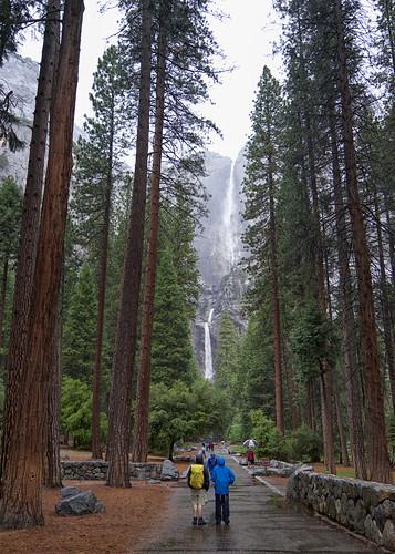 Falls, Yosemite