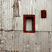 Portland Wall by Judi FitzPatrick Studio