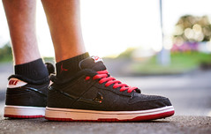 SB Dunk Low LARRY PERKINS
