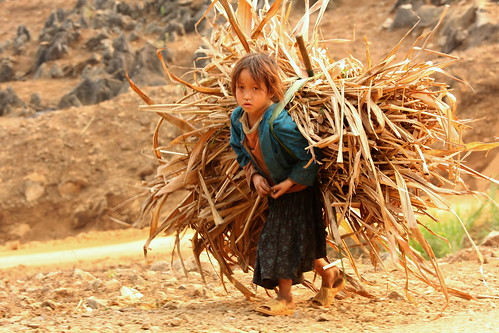 Child Labour Photo Contest 2012_selected photo