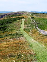 The Costal path on Caldey Island 26th June 2013 (2)
