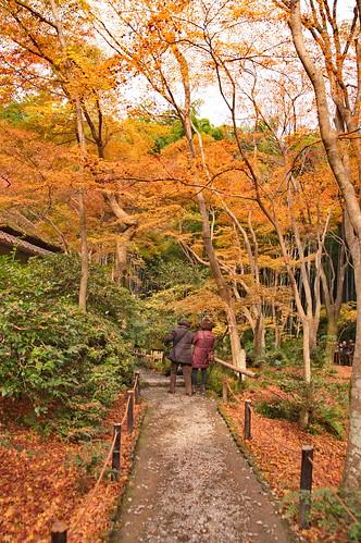 【写真】2012 紅葉 : 祇王寺/2021-09-05/IMGP7863