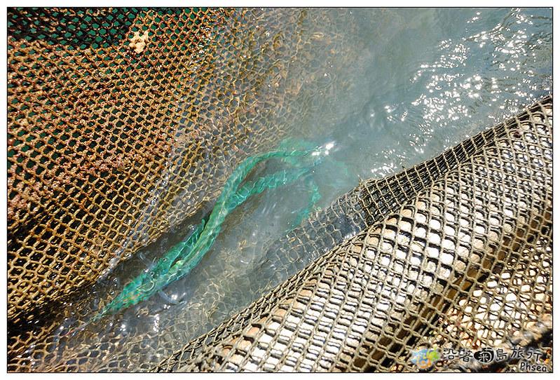 2013元貝休閒漁業_28