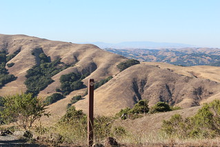 July 18-2013 Volcanic Trail stop 11 (see below for info) Sibley Volcanic Regional Preserve, Oakland, CA,USAT3i 135