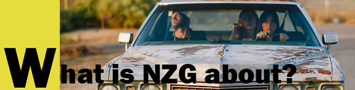 What is NZG about