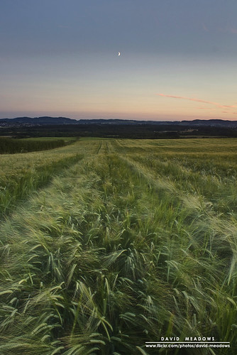 sunset moon field scotland farm farming meadow crescent crop crops agriculture agricultural dumfries galloway arable torthorwald davidmeadows dmeadows davidameadows dameadows