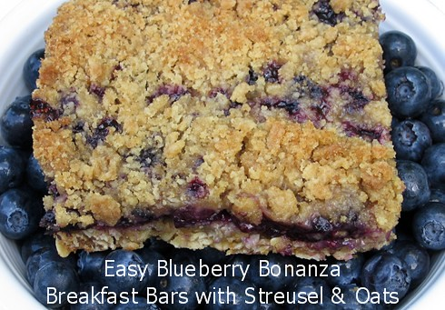 Easy Blueberry Bonanza Breakfast Bars with Oat Crust and Streusel Topping - FarmgirlFare.com