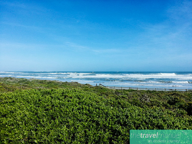 West Coast National Park and Jacobsbaai 2013-17