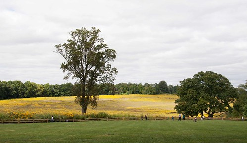 Meadow Longwood Gardens 9-14-13 0521 lo-res