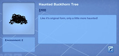 Haunted Buckhorn Tree
