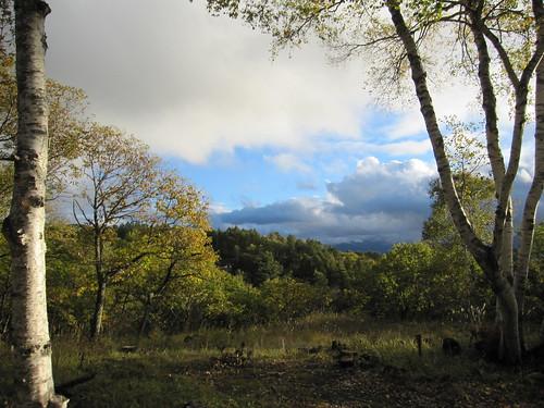 散歩中に見た美しい景色・・・ by Poran111
