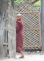 Taung Bi Village monk