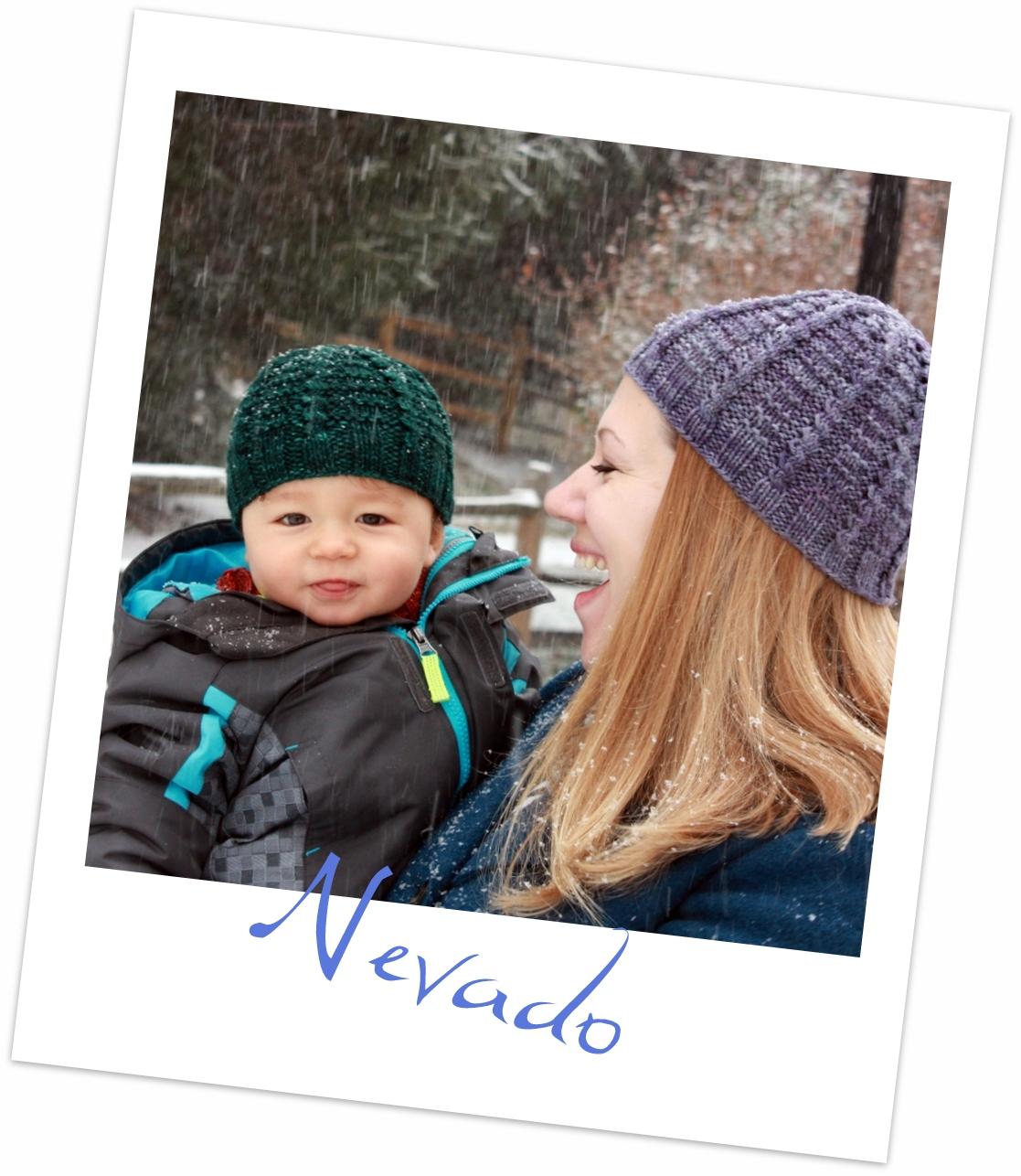 nevado polaroid
