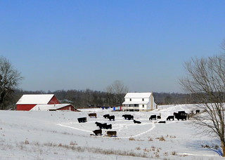 Amish Farm on a Winter Day