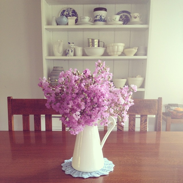 Gorgeousness 'foraged' on our walk this morning. #flowers #findingbeautyeverywhere