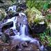 Bas de la cascade de la crache ©Sylvain Abdoul Photographe
