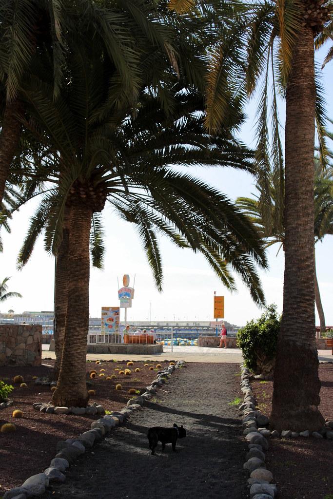 PUERTO RICO 2013 195