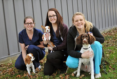 Veterinary Admin Assistant students