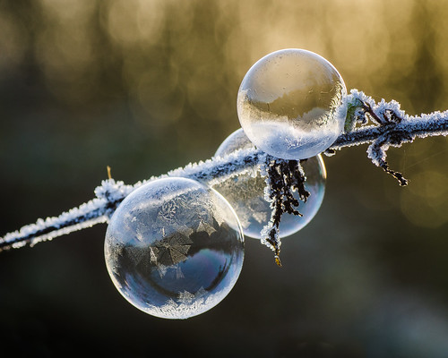 Frozen bubbles by Anniison