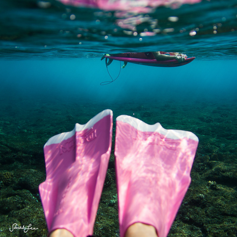 013-sarahlee-pink_dafins_underwater.jpg