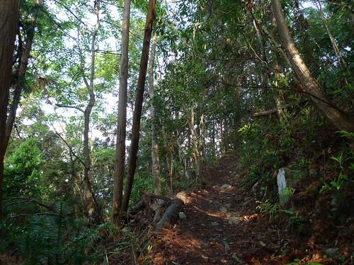 20140322-馬崙山 (24)
