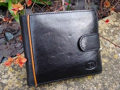 A rectangular wallet made from black leather, with a small flap of leather closing it on the right-hand side and a decorative orange-brown stripe on the left hand side.  The wallet has been placed down somewhere outdoors; it's resting on mottled stone slabs, and a few strands of orange leaves twine around it.