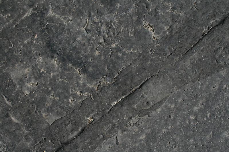 20 Premium Asphalt texture - 20 # texturepalace