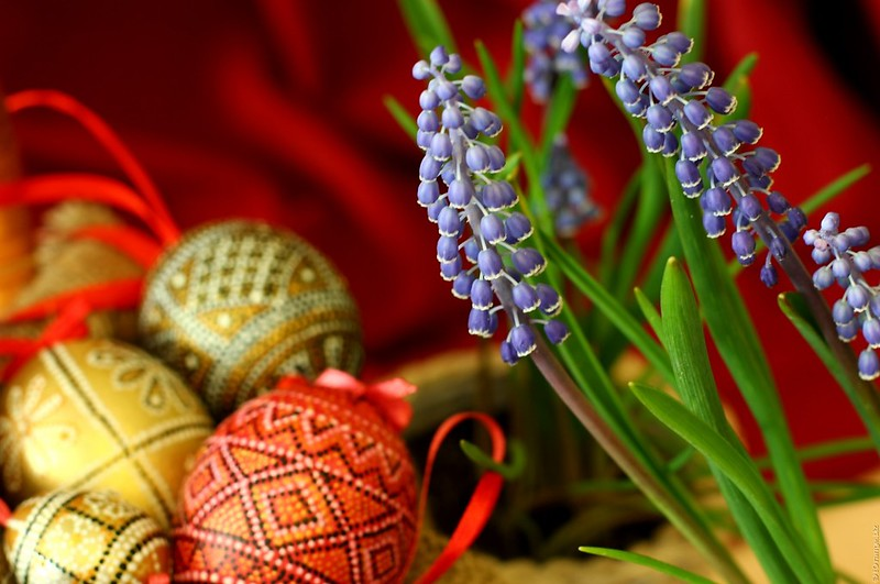 13715010744 ace8a6c6a9 c Why Does Holy Week Fall On Different Dates Every Year?