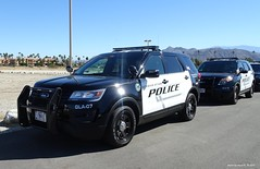 United States Department of Veterans Affairs Police - Ford Police Interceptor Utility (11)