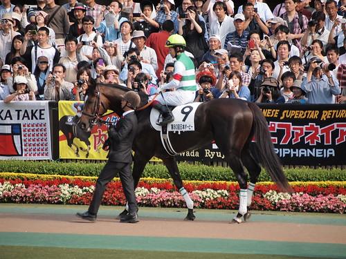 Epiphaneia and Yuichi Fukunaga