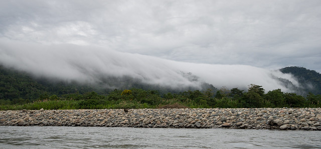 Amazonia - 36 - Fog rolling over jungle
