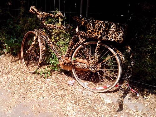 Bicicletta leopardata by Ylbert Durishti