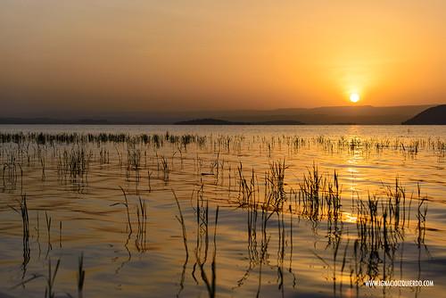 Kenya - Lake Baringo 08