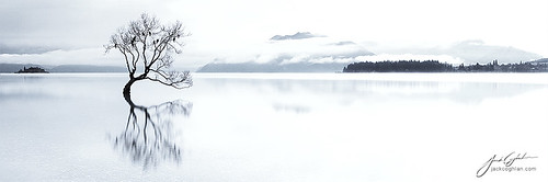 new longexposure travel blue newzealand urban bw panorama sun lake plant abstract cold reflection tree art love nature water contrast sunrise canon landscape photography amazing rocks long central zealand otago wanaka photooftheday coghlan
