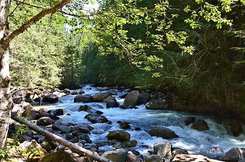 usa river washington whitewater rapids nooksakriver sr542 nooksakfalls nikond7000 mtbakerscenichighway nikkor18to200mmvrlens