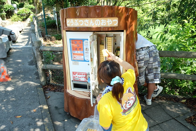 130901家族で日本平動物園 020