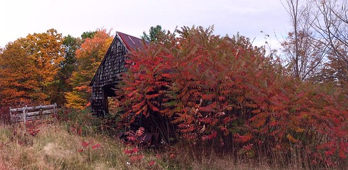 2013_1014Old-Shed-Pano0001 by maineman152 (Lou)