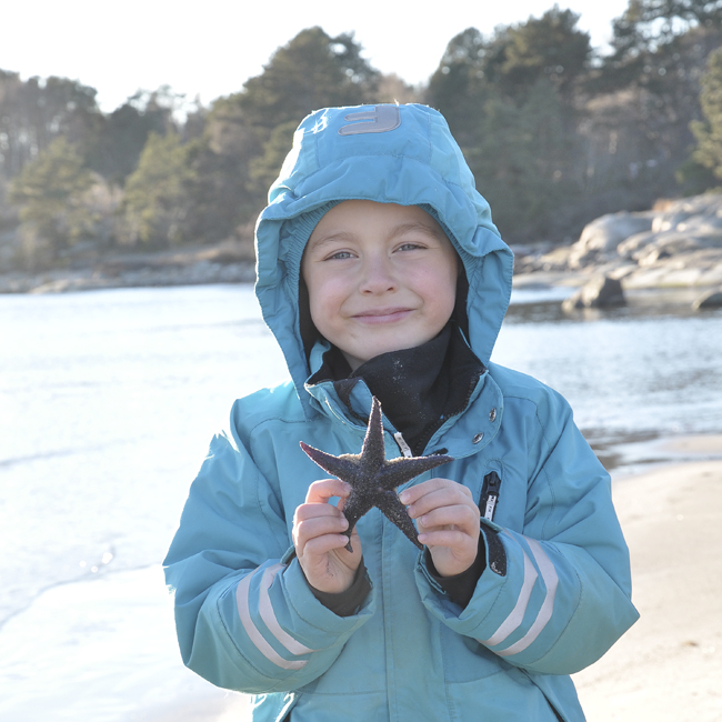 nilse hittade en sjöstjärna