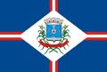 Bandeira da cidade de Patos de Minas