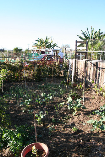 Tijuana River Valley Recreational Park Community Garden