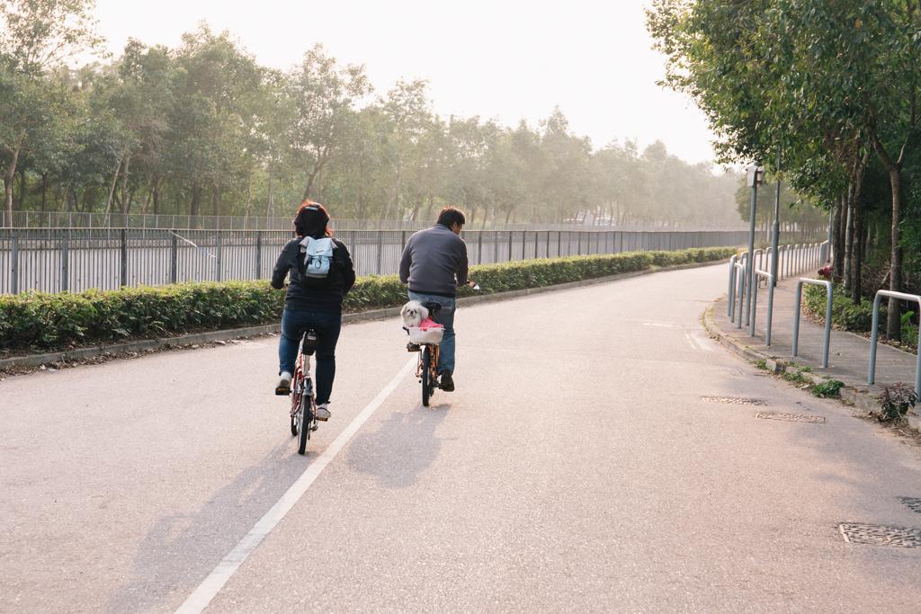 無標題  大棠紅葉單車遊記 11658039926 627e5501e5 o