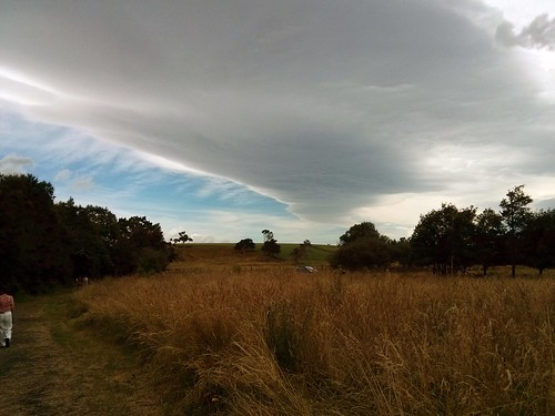 park newzealand cloud weather walking outdoor carter gladstone wairarapa